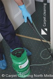 Professional Carpet Cleaners North Melbourne 3051